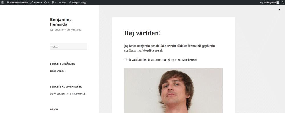 Publicera inlägg i WordPress