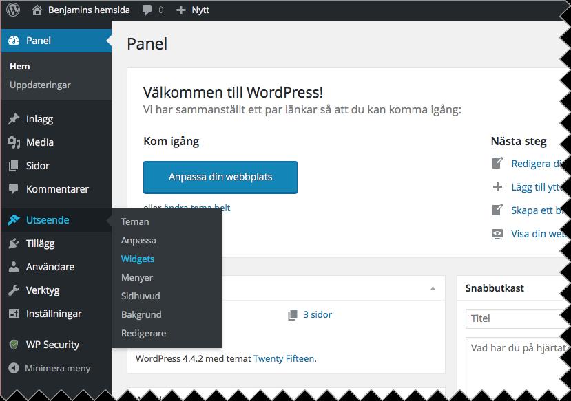 För att använda både tillägg och widgets på din WordPress-sida loggar du in i WordPress och väljer Utseende > Widgets i menyn till vänster.