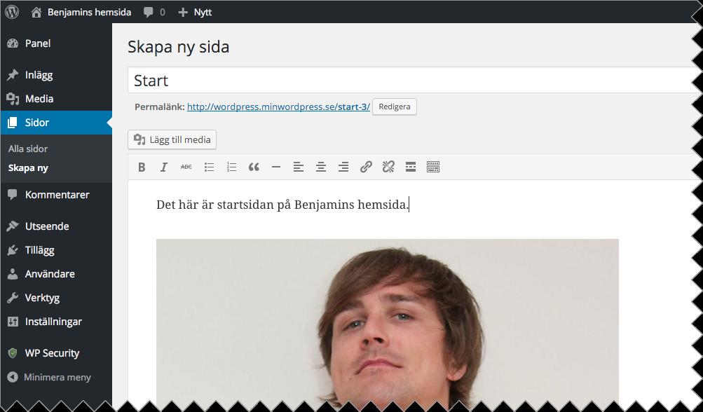 """Döp sidan till t ex """"Start"""". Lägg till de bilder och den text du önskar och publicera sedan sidan."""