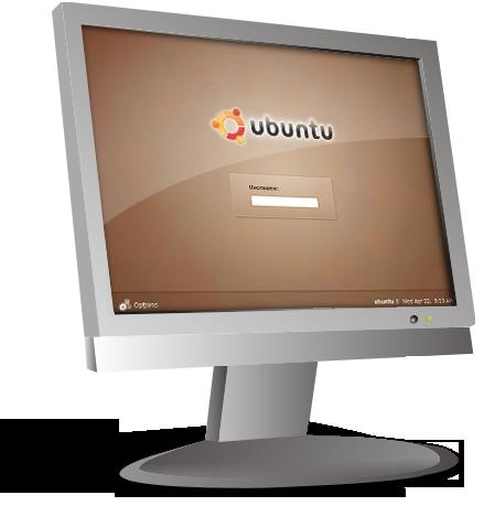 Skärmdump av en VPS med Linux-distributionen Ubuntu.