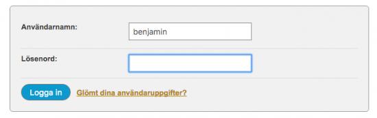 Inloggningsruta till Loopia kundzon där du bland annat skriver in ditt val av lösenord.