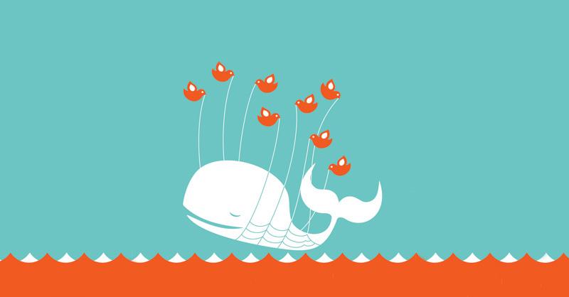"""En så kallad """"fail whale"""" på Twitter som innebär ett avbrott på tjänsten."""