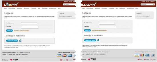 fake-correct-login-page