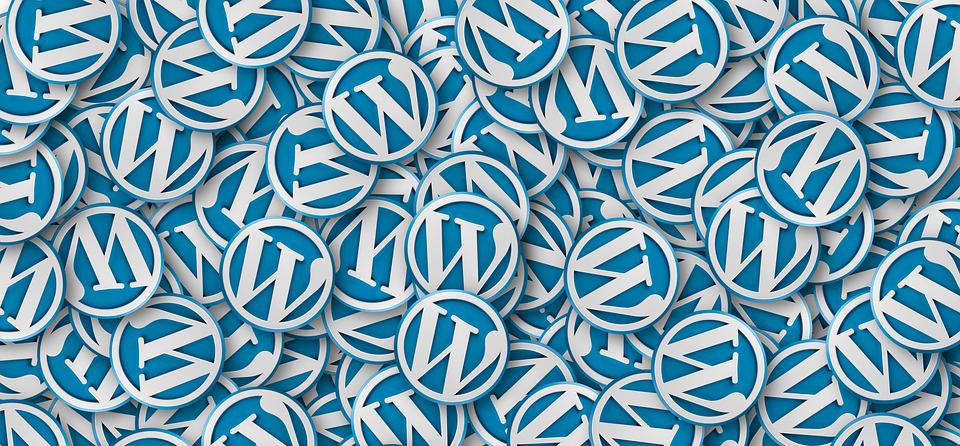 En bild på WordPress-logotyper till inlägget om att få sin WordPress-sajt hackad.