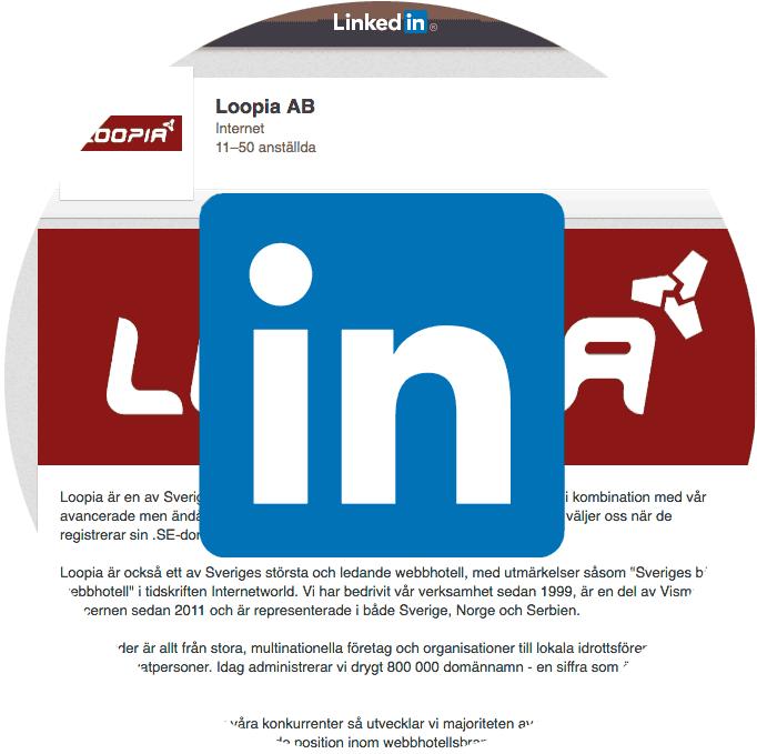 linkedin-cirkel