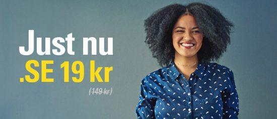 Registrera .SE-domännamn för endast 19 kr/st
